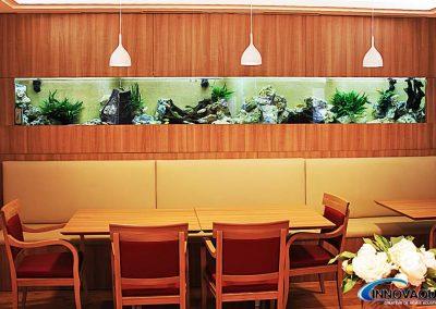 aquarium_ malawi_maison_de retraite