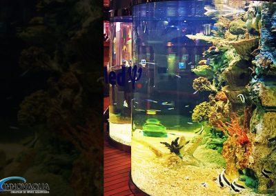 Aquarium semi-rond