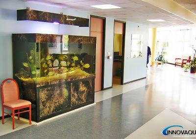 aquarium_maison_de_retraite_2
